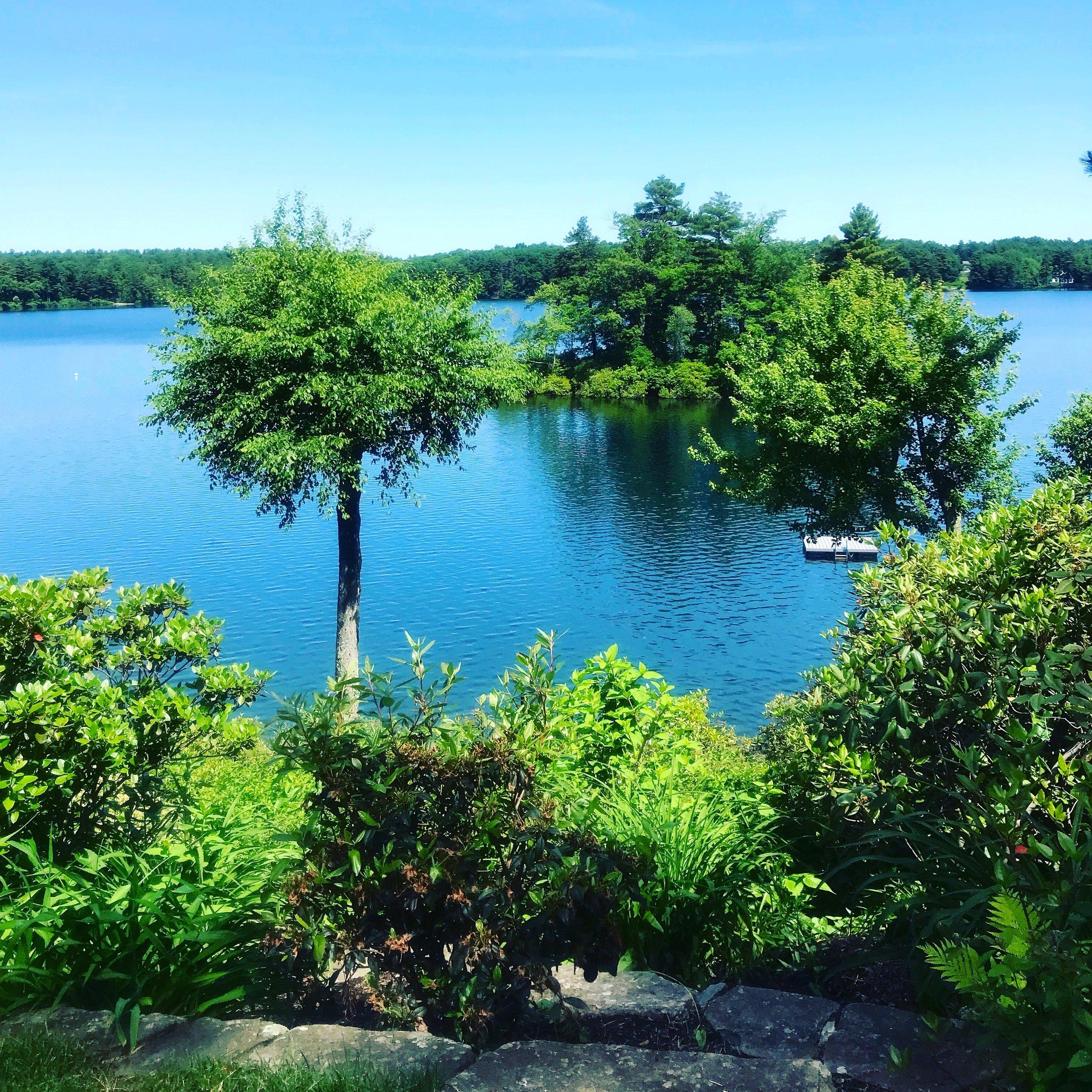 Farm Pond view from writing studio