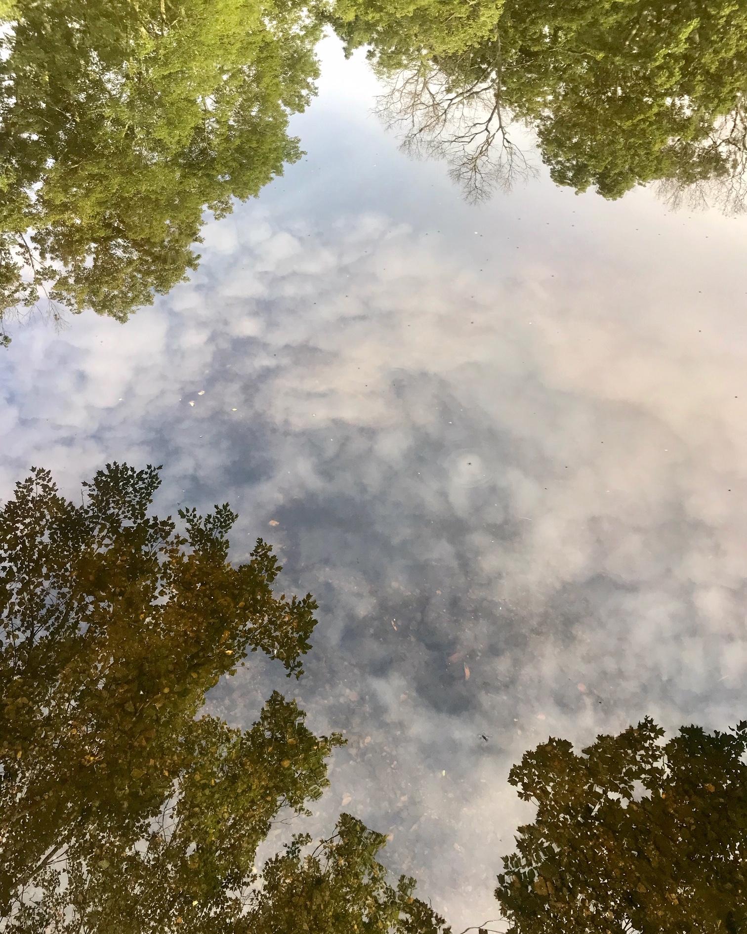 river cloud.JPG