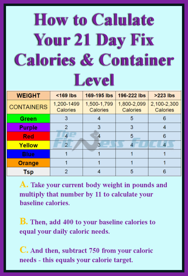 Green container = vegetables Purple container = fruits Red container = proteins Yellow container = carbohydrates Blue container = healthy fats and cheeses Orange container = seeds, nuts, and dressings Teaspoon = oils and nut butters