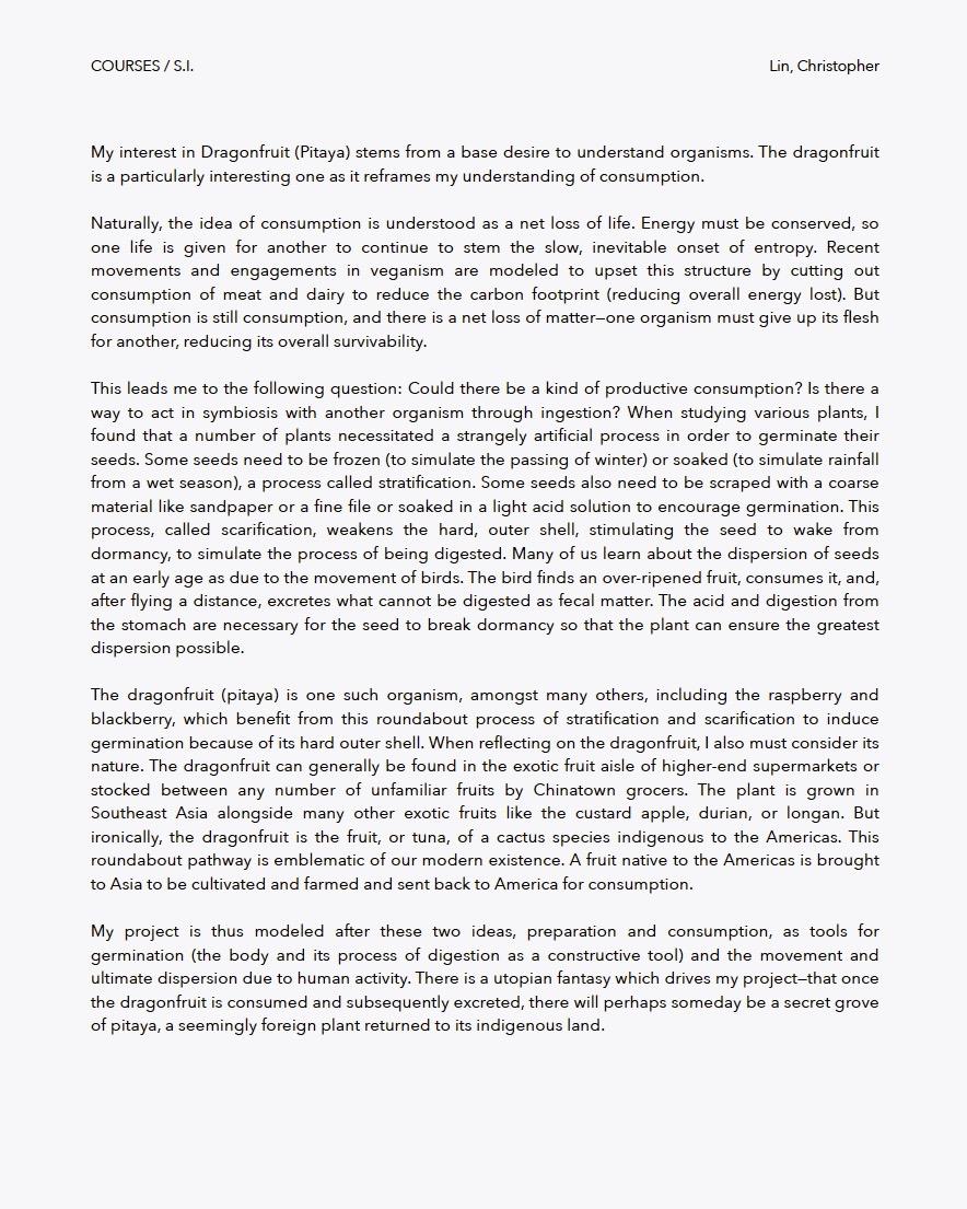 Pitaya Propagation  by Christopher Lin