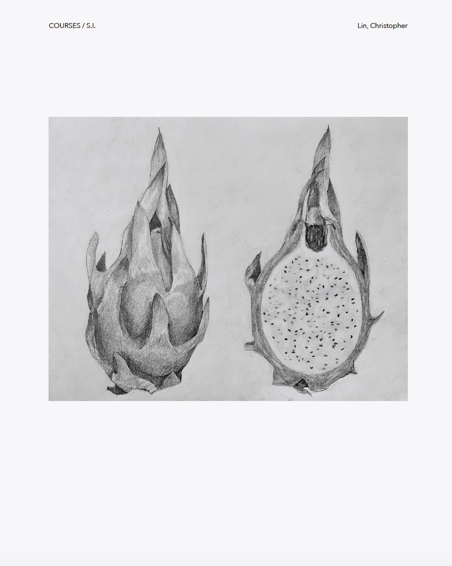 Dragonfruit Drawing  by Christopher Lin