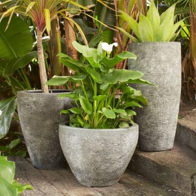 west-elm-planters-395x395.jpg
