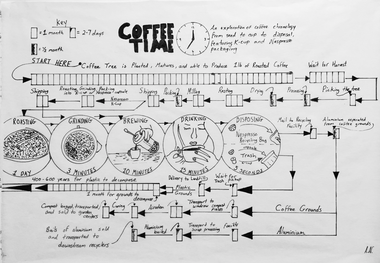 A Journey map of coffee, from seed to cup