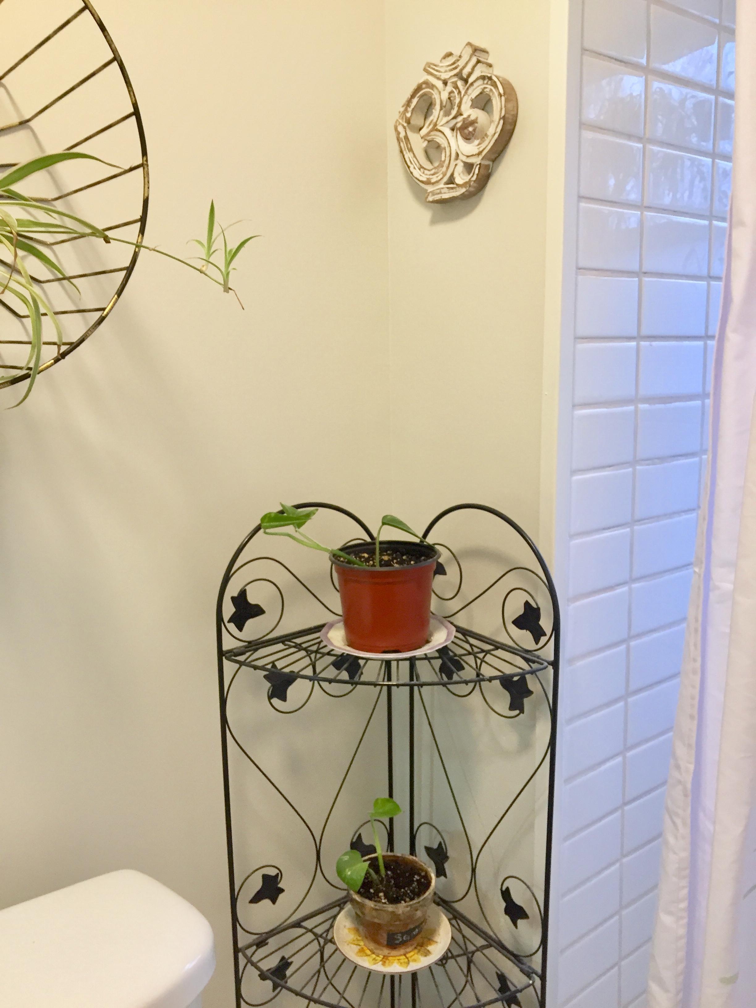 corner plant stand.jpg