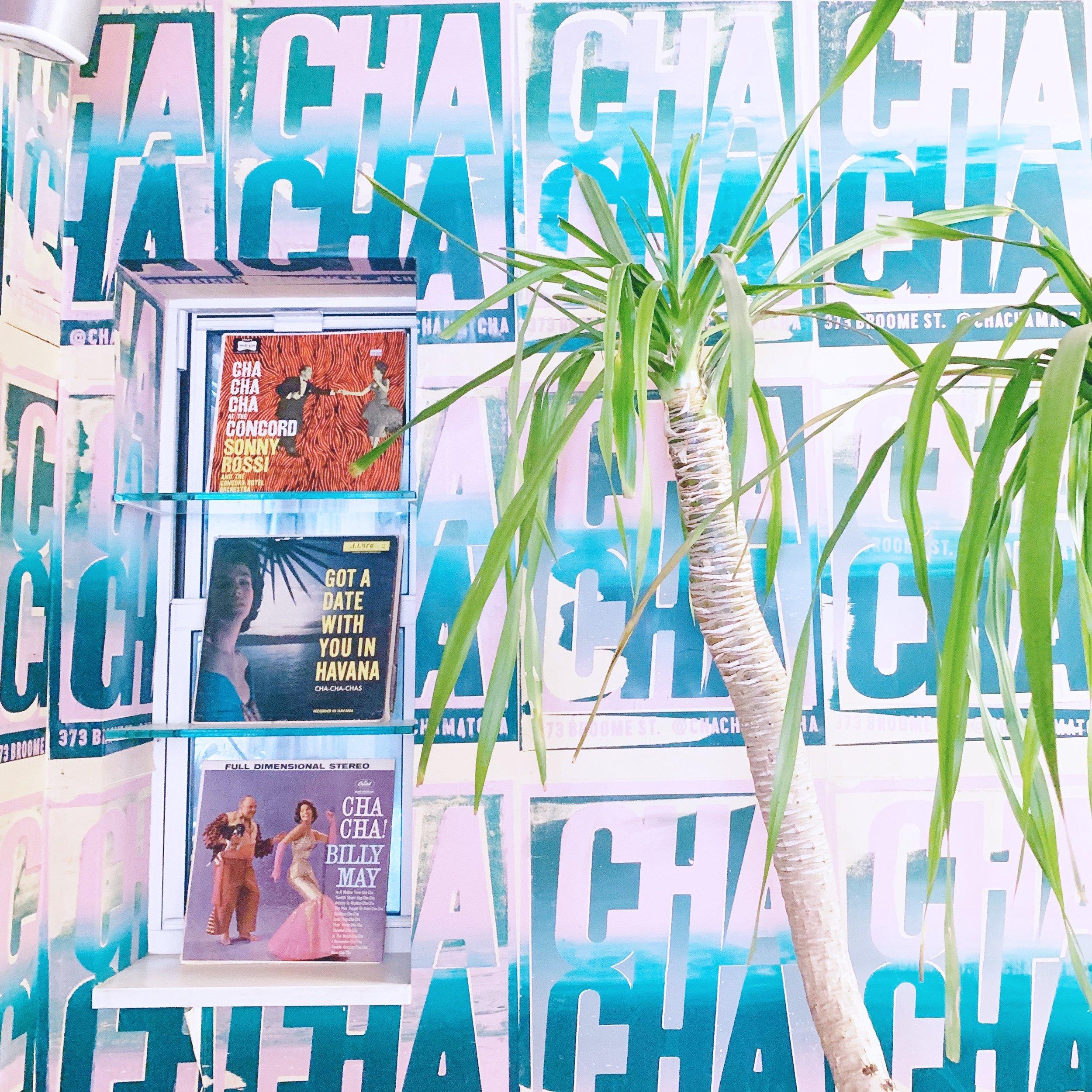 Cha Cha Matcha + The Caroline Doll
