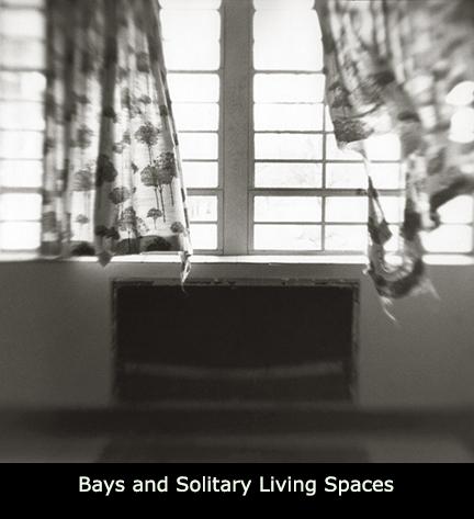 Bays Solitary ICON.jpg