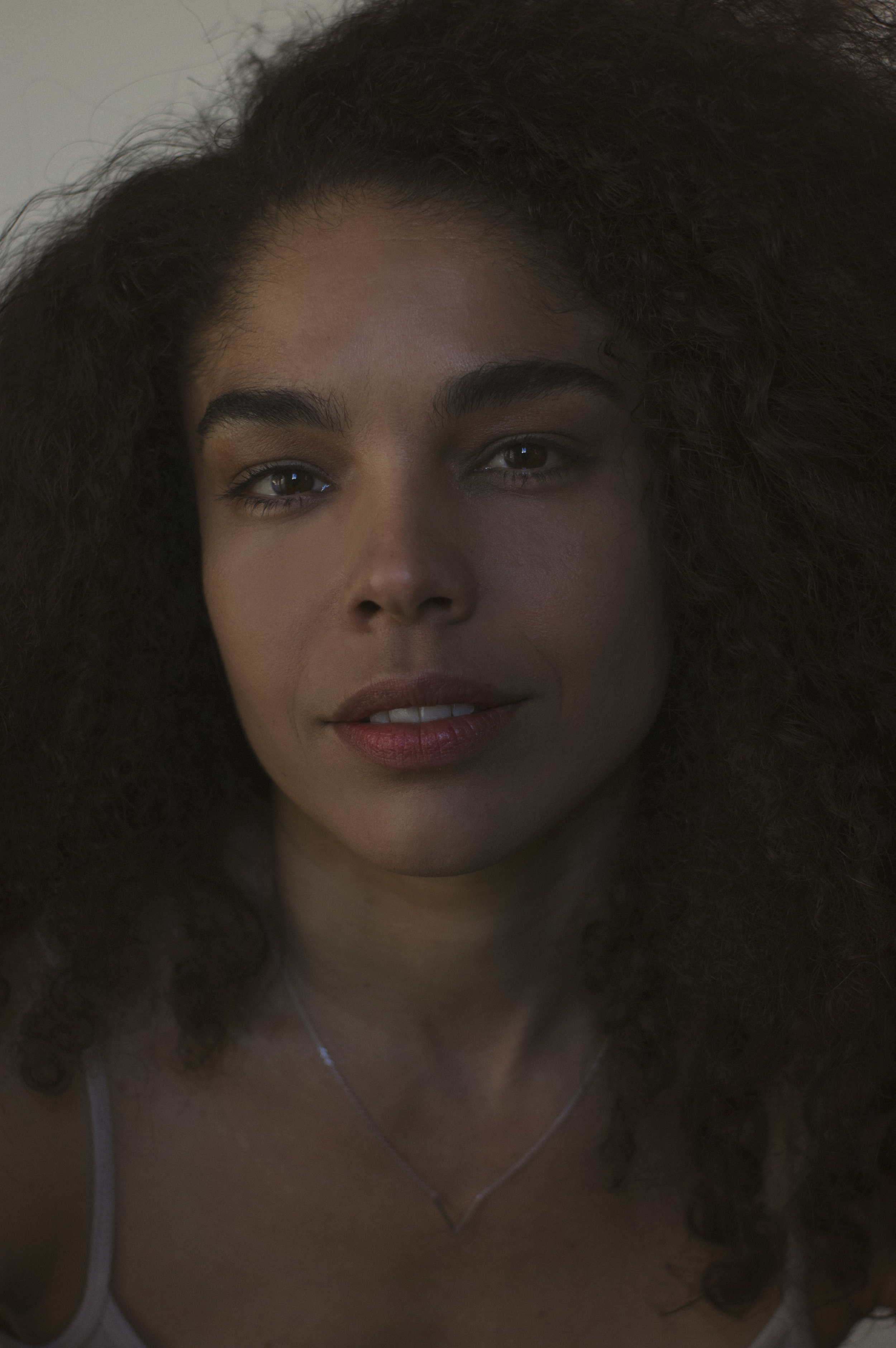 Heirloom Portrait of a Young Woman