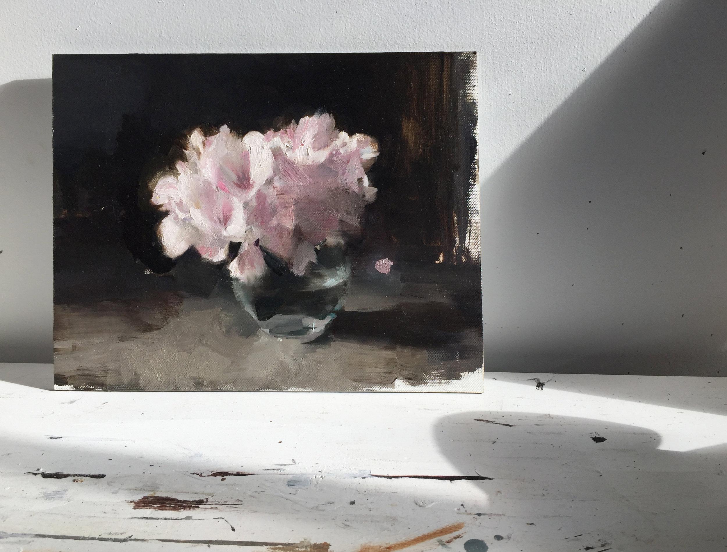 rhododendrons.jpg