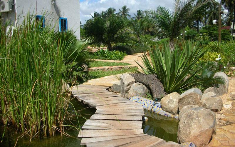 Floating walkway over pond