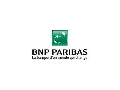 logo_part_2012-06-12-06-logo-bnp.jpg
