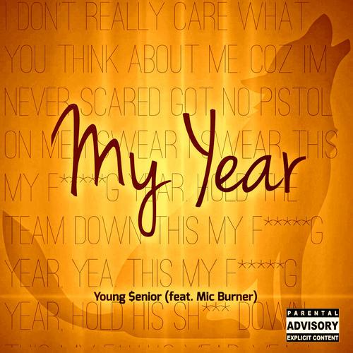 my year.jpg