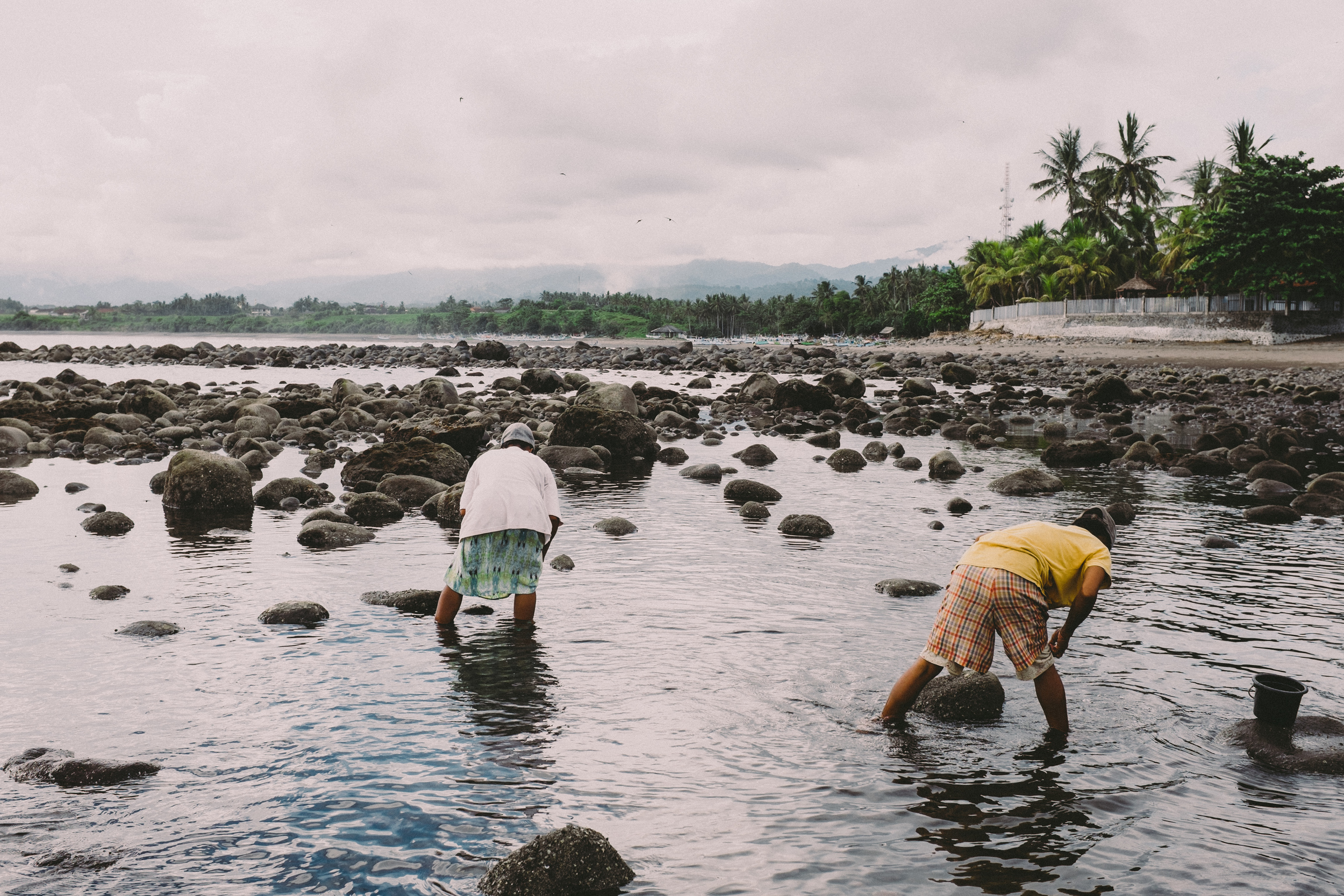 Bali_Indonesia_photo_journalism_shellfish_collecting_global_eyes_media_015.jpg