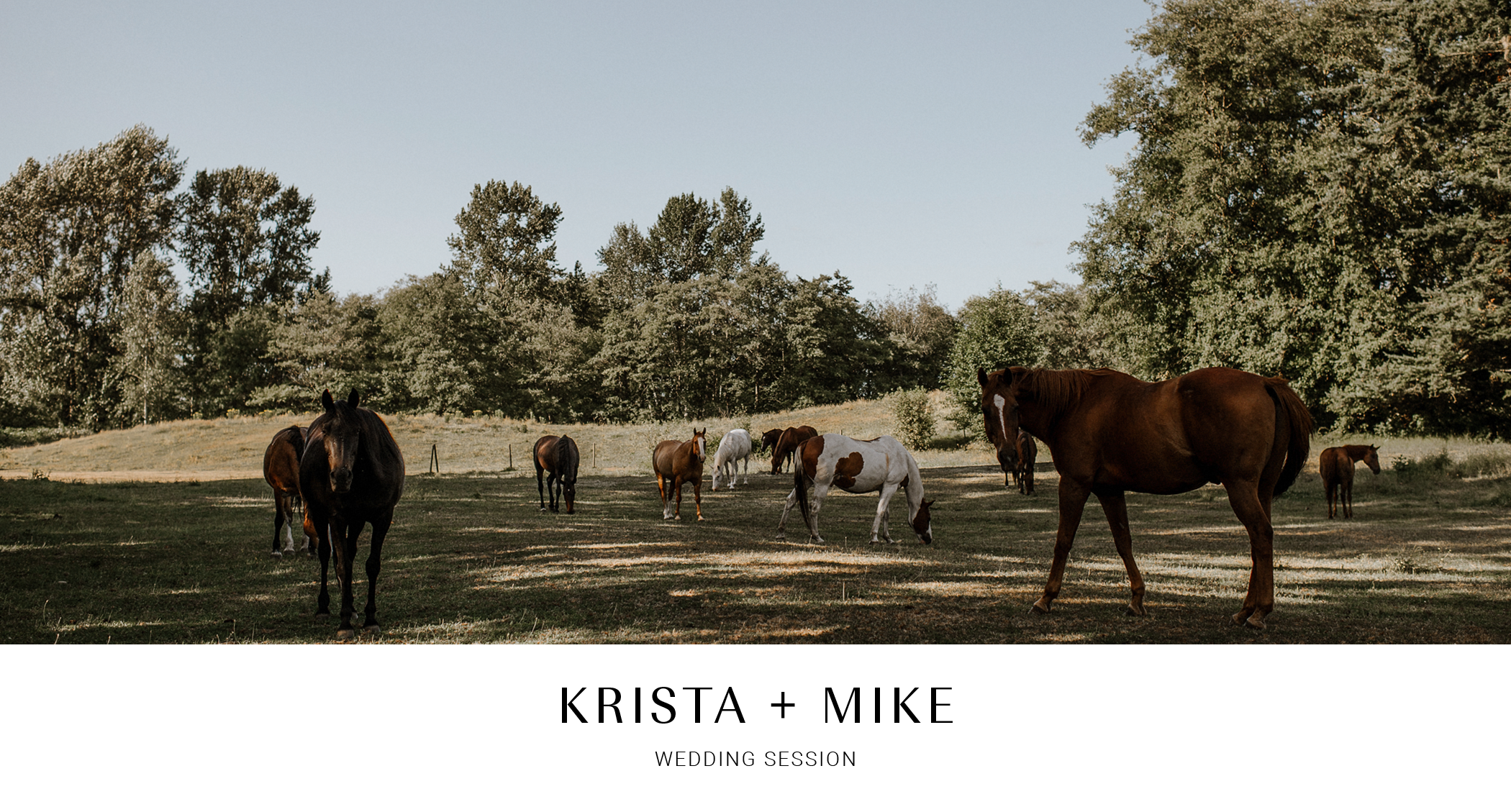 HEADER001-kaoverii-silva-KM-prewedding-vancouver-photography-webbs-holiday-acres-horse-ranch-blog.png