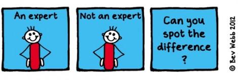 Am I an expert