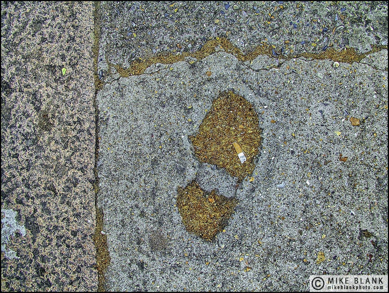 Footprint, 2004