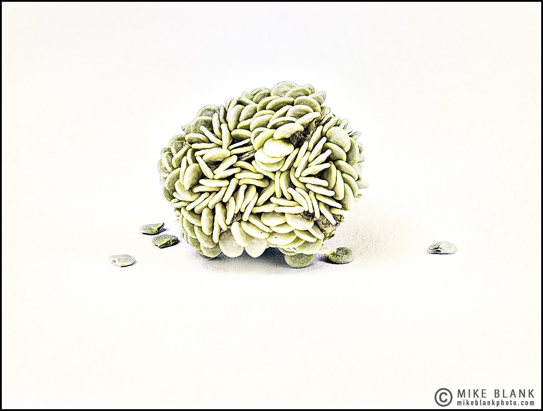 Sweet pepper seeds #2, 2016