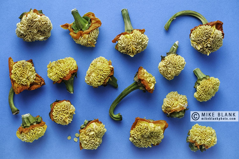 Sweet pepper seeds #5, 2017