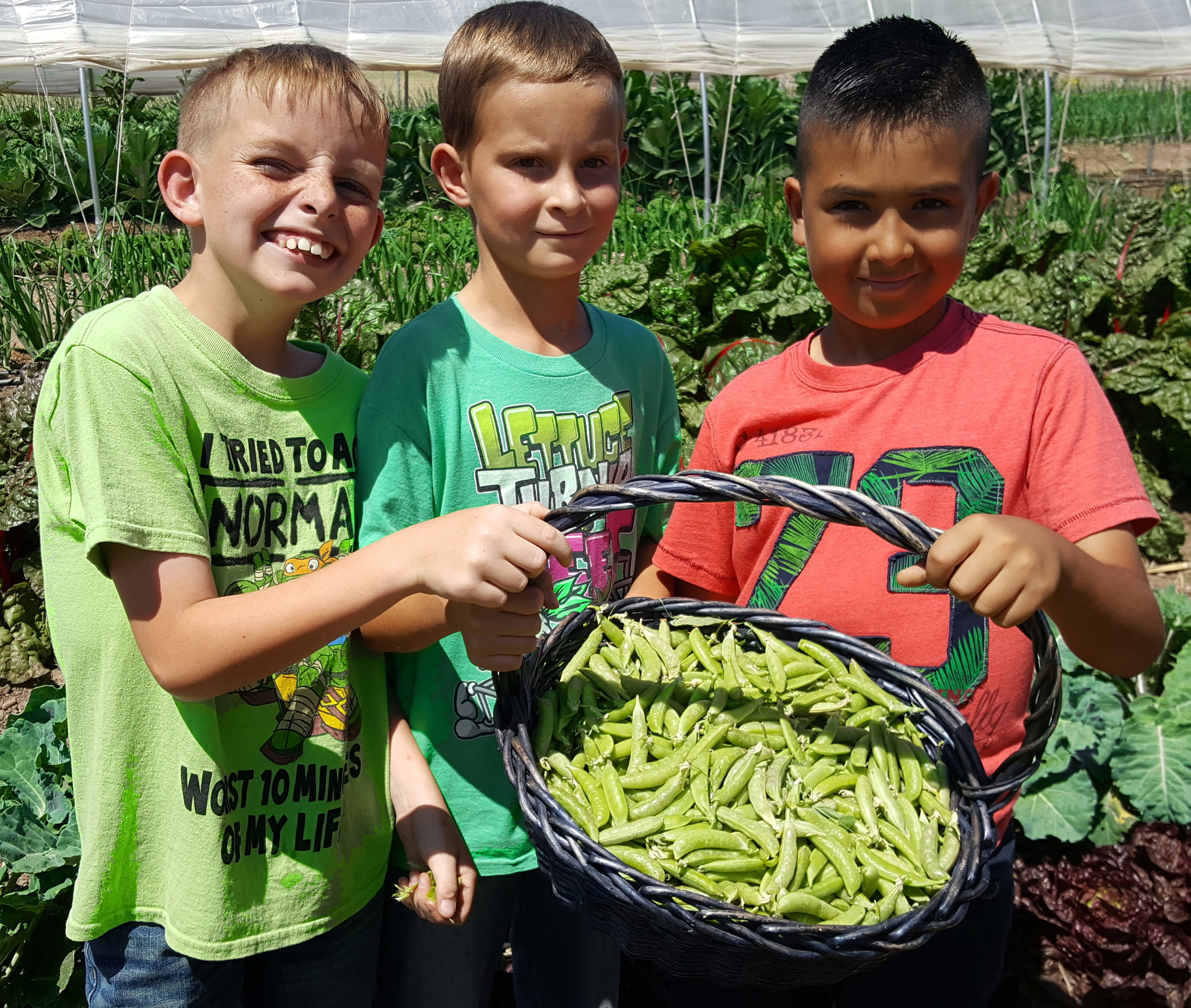 Boys with sugar snap peas at ONF&P (1).jpg