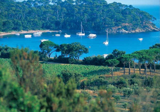 Provence rosé is as delectable as the locations it comes from.