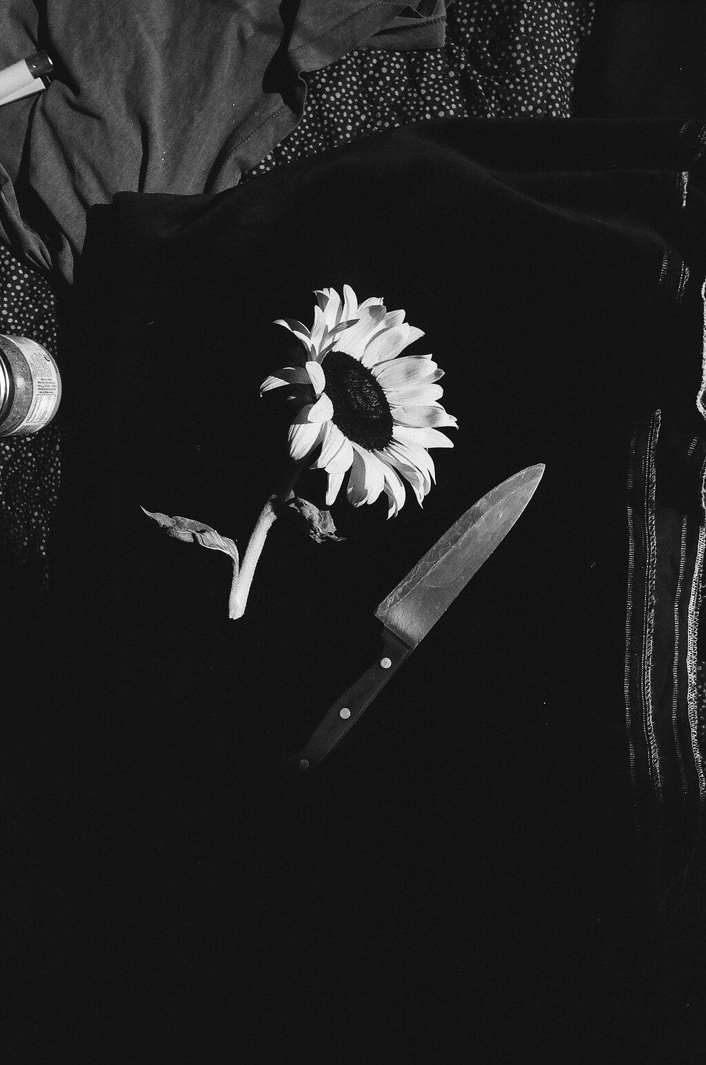 'Still Knife' 2018