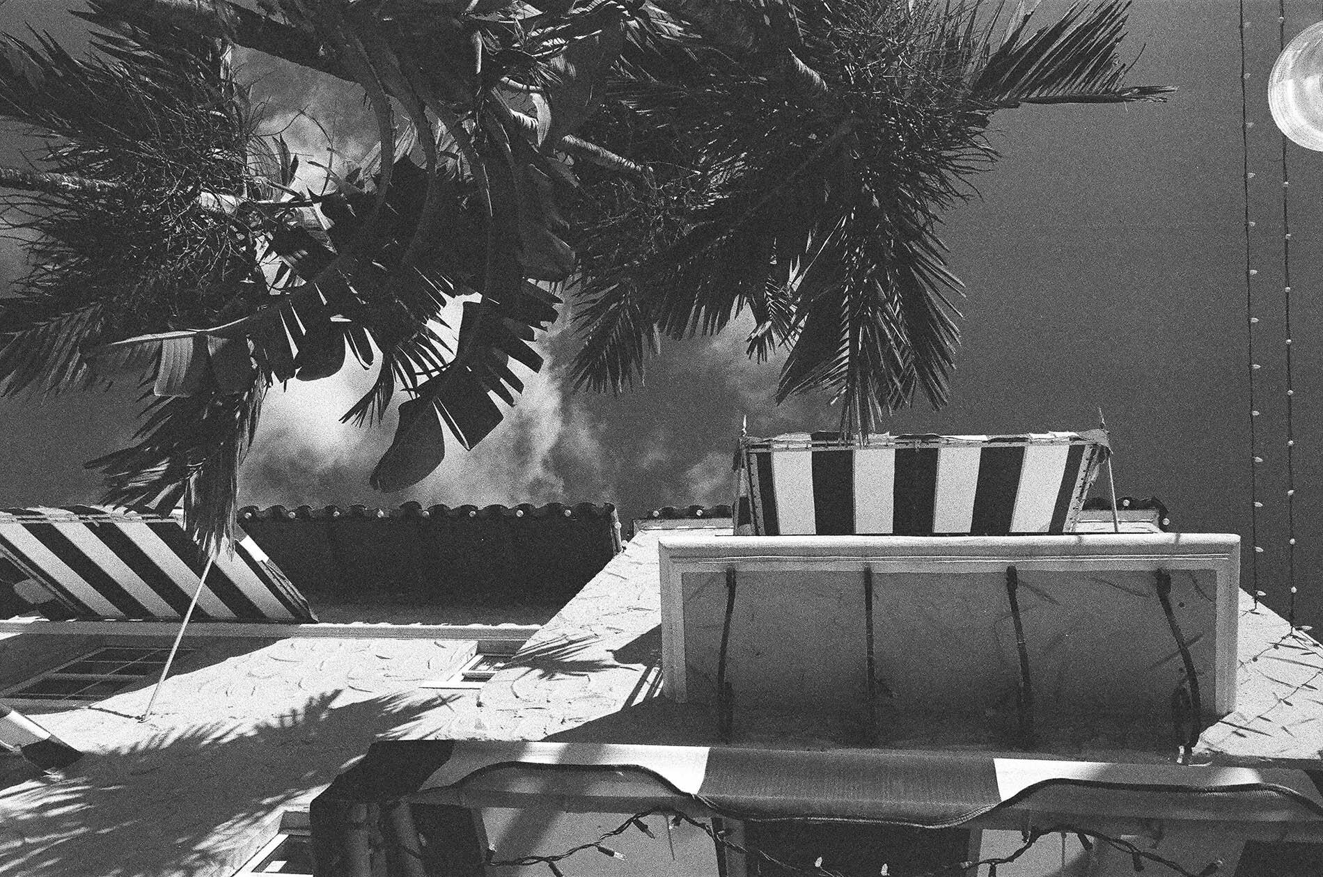 'Miami's Perspective' 2014