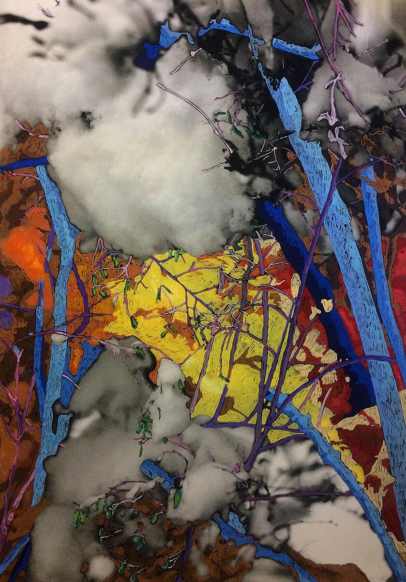 'The Vortex of Twigs' 2016, Inkjet photograph & Acrylic, 90x120cm