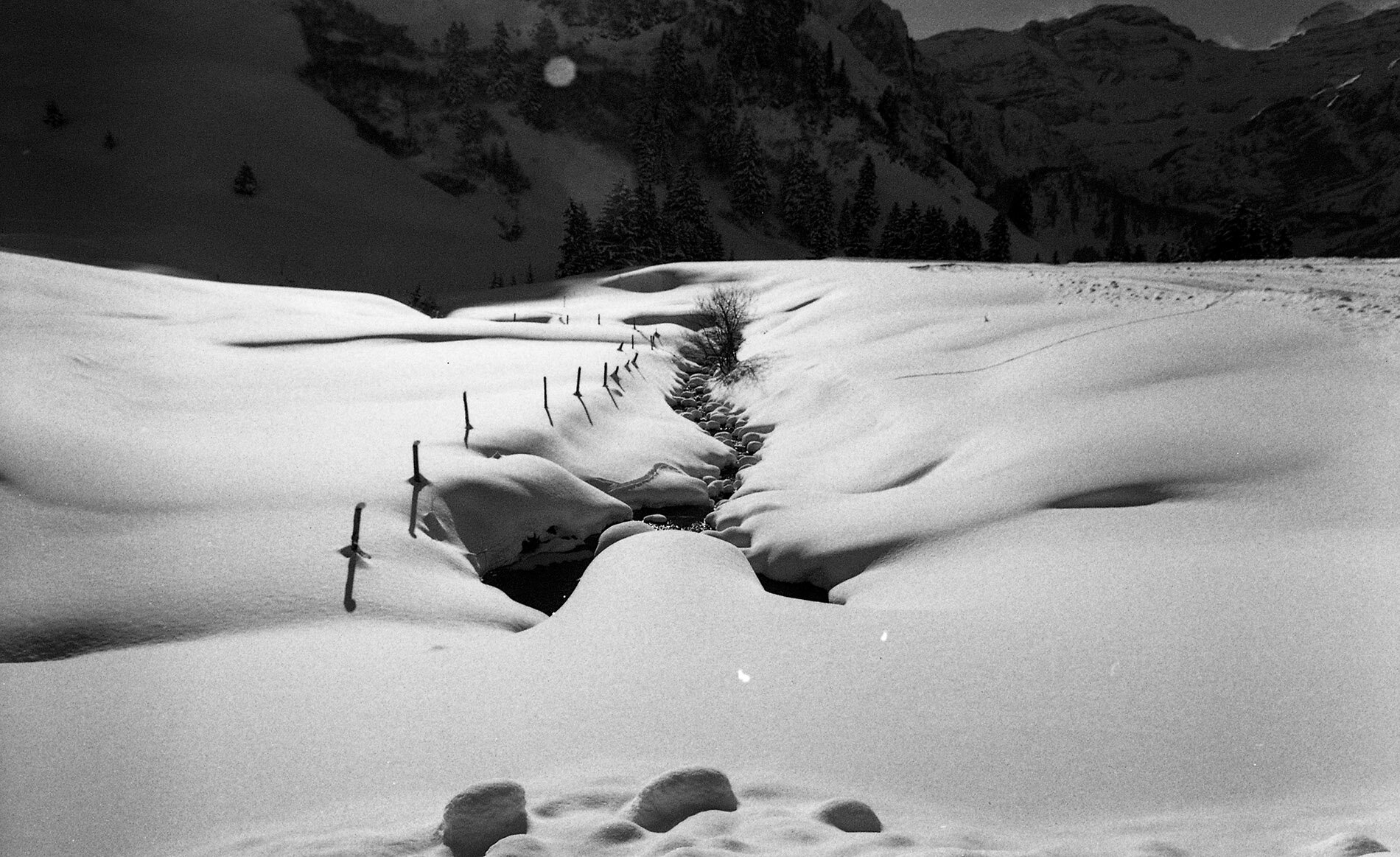 'Swiss Snow Tracks' 2017