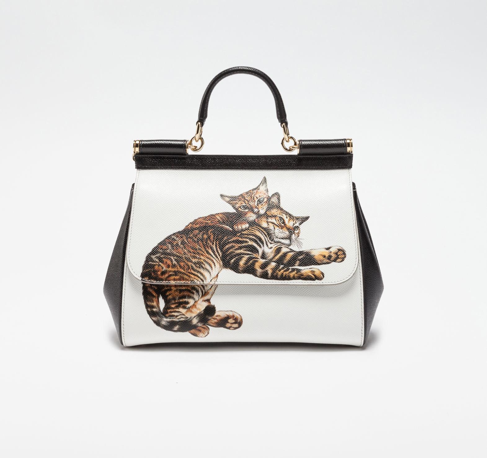 Dolce & Gabbana $2,495