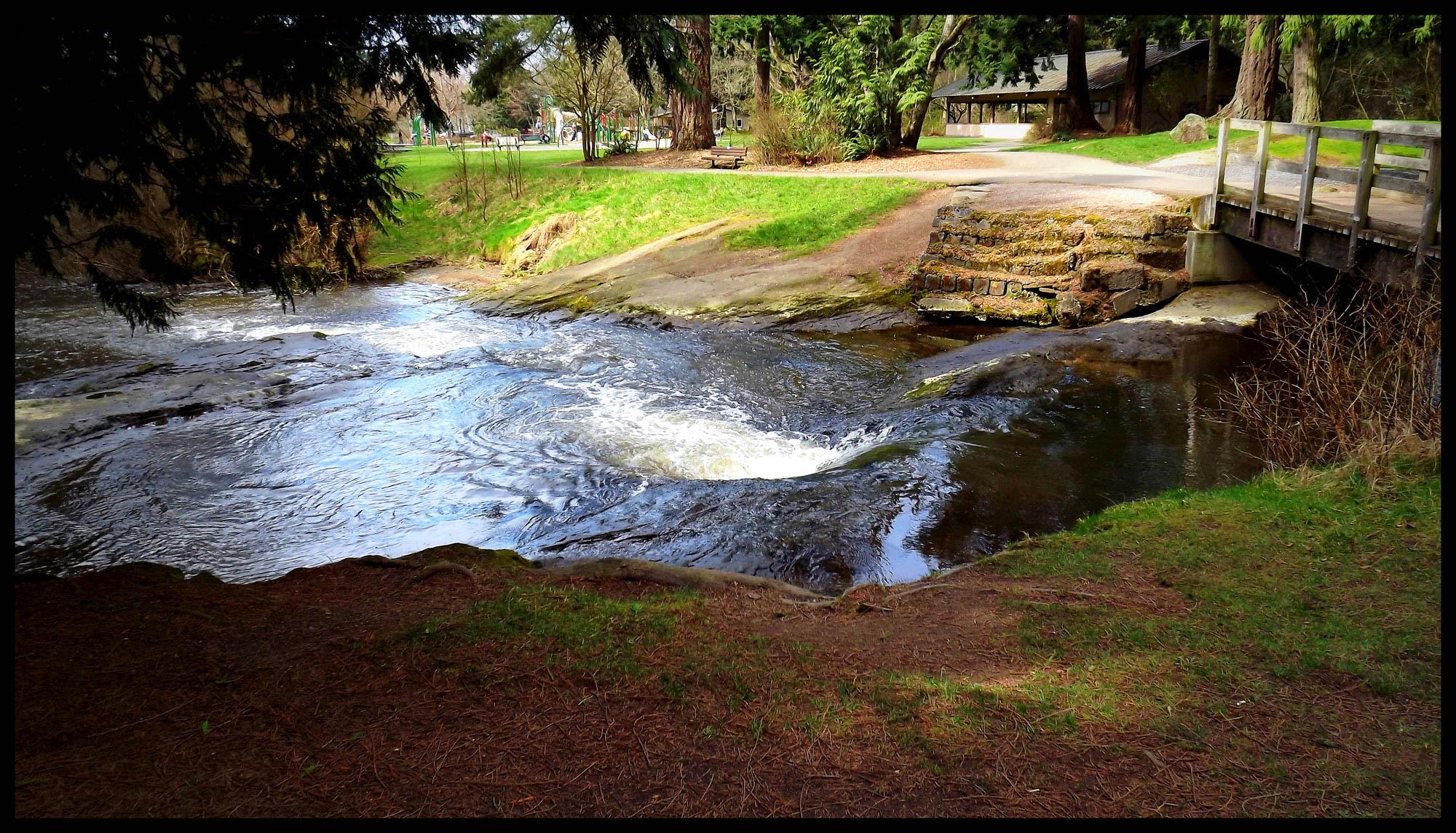 Cornwall Park and Creek.jpg
