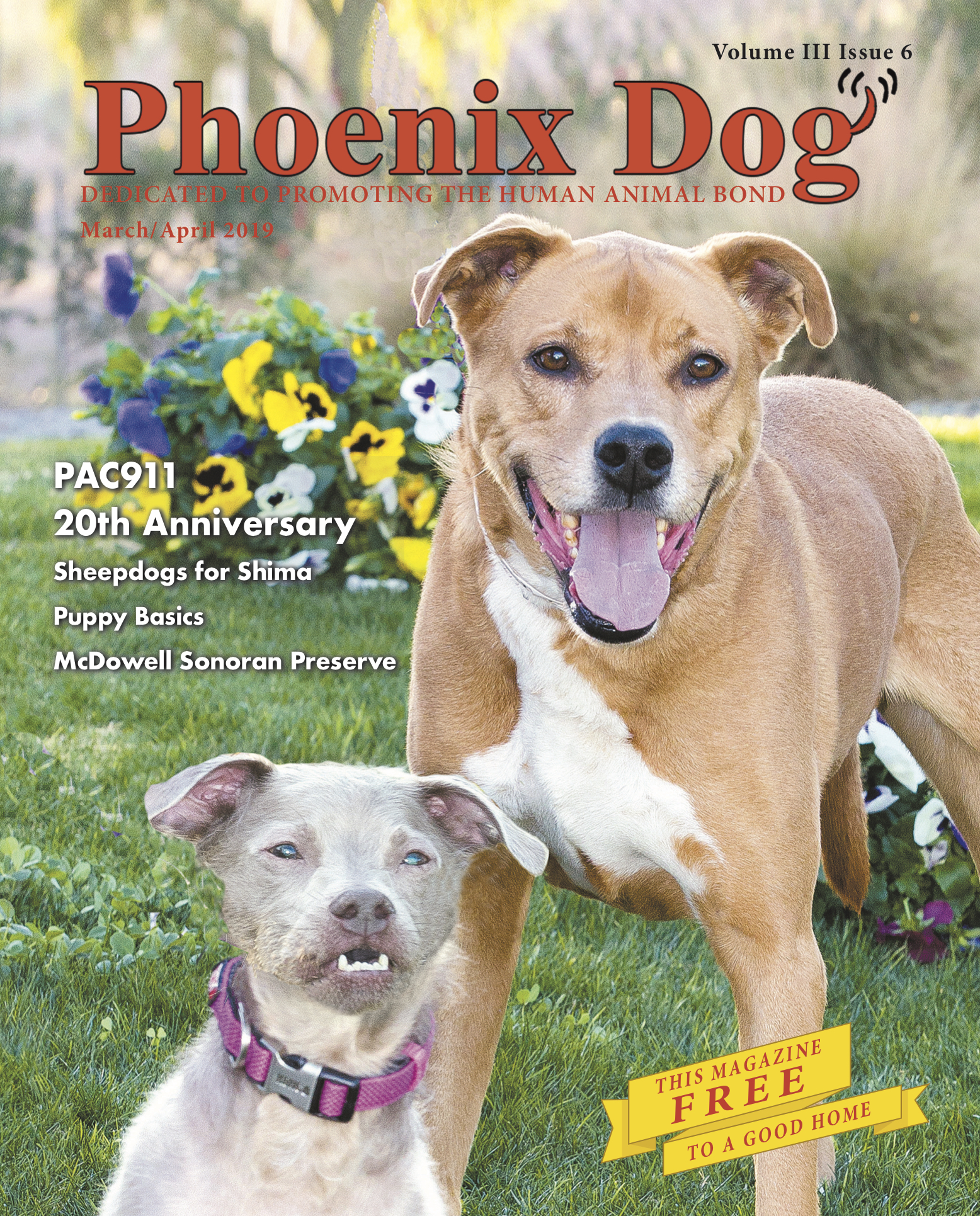 Flash and Hound Phx Dog March April 2019 cover