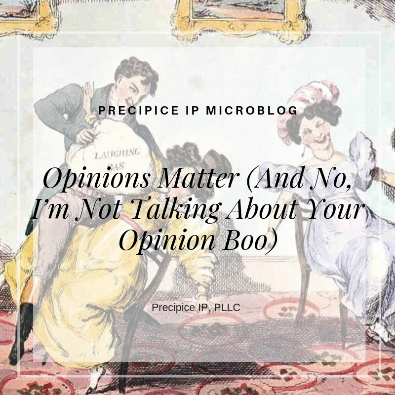 Precipice IP PLLC Opinions Matter (And No, I'm Not Talking About Your Opinion Boo)