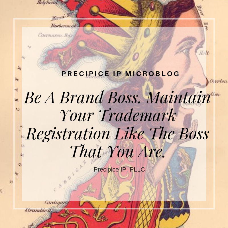 Precipice IP PLLC Be A Brand Boss. Maintain Your Trademark Registration Like The Boss That You Are.