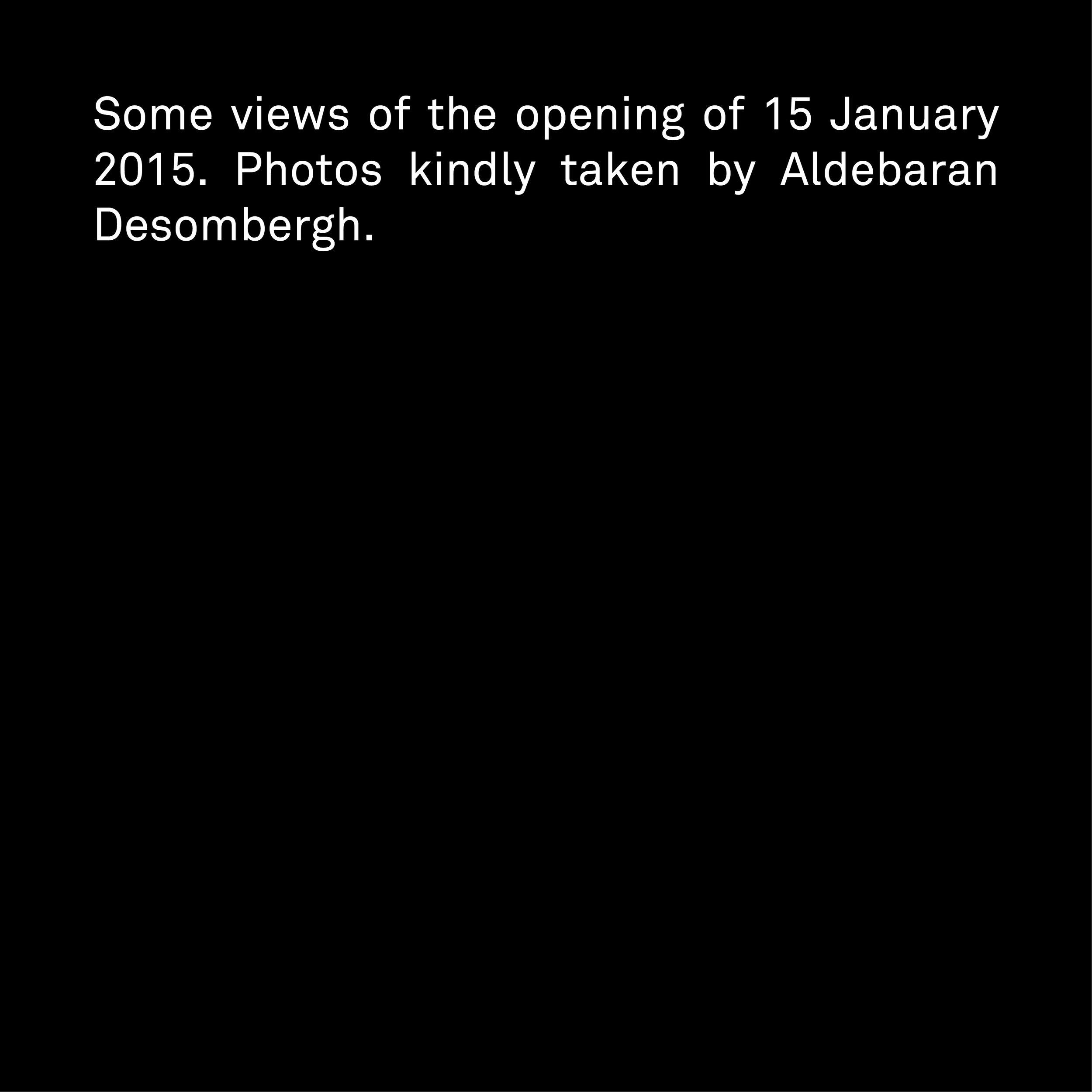 Rivoli Live Aldebaran Desombergh opening.jpg