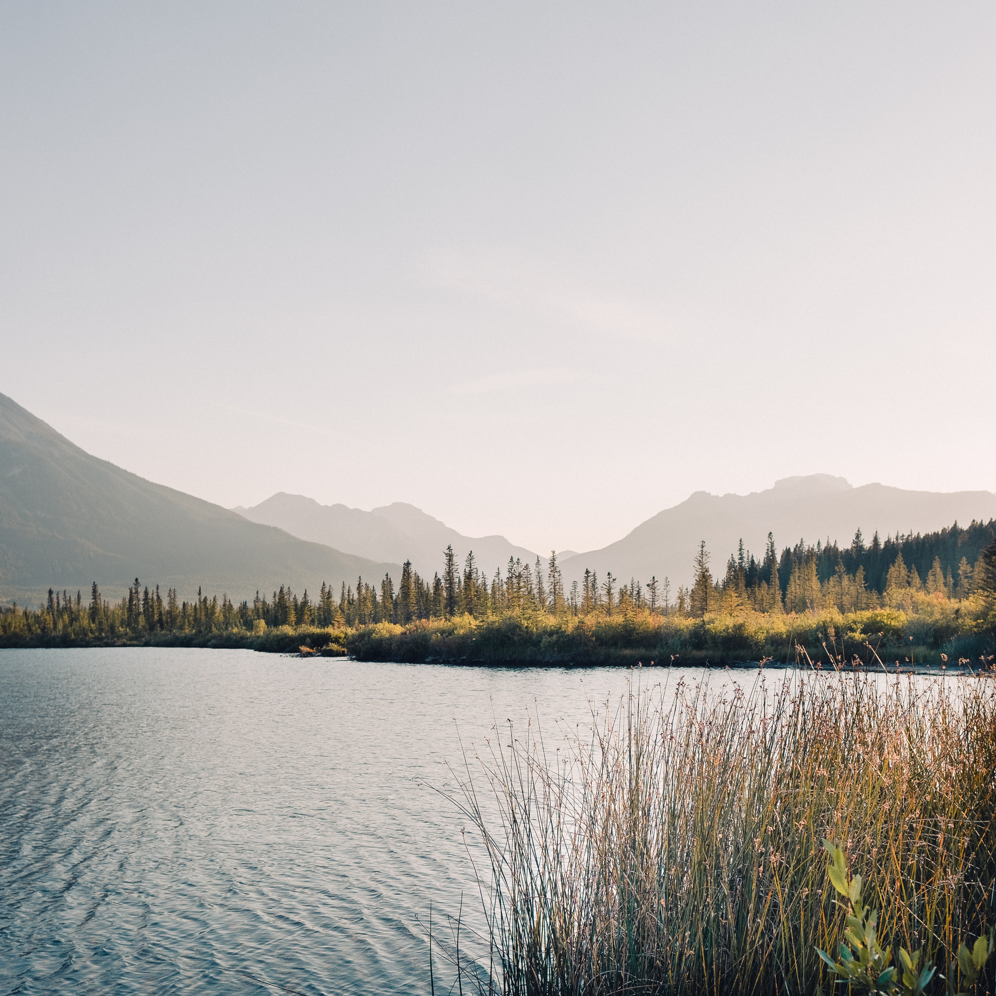 Vermillion Lakes, Alberta, Canada