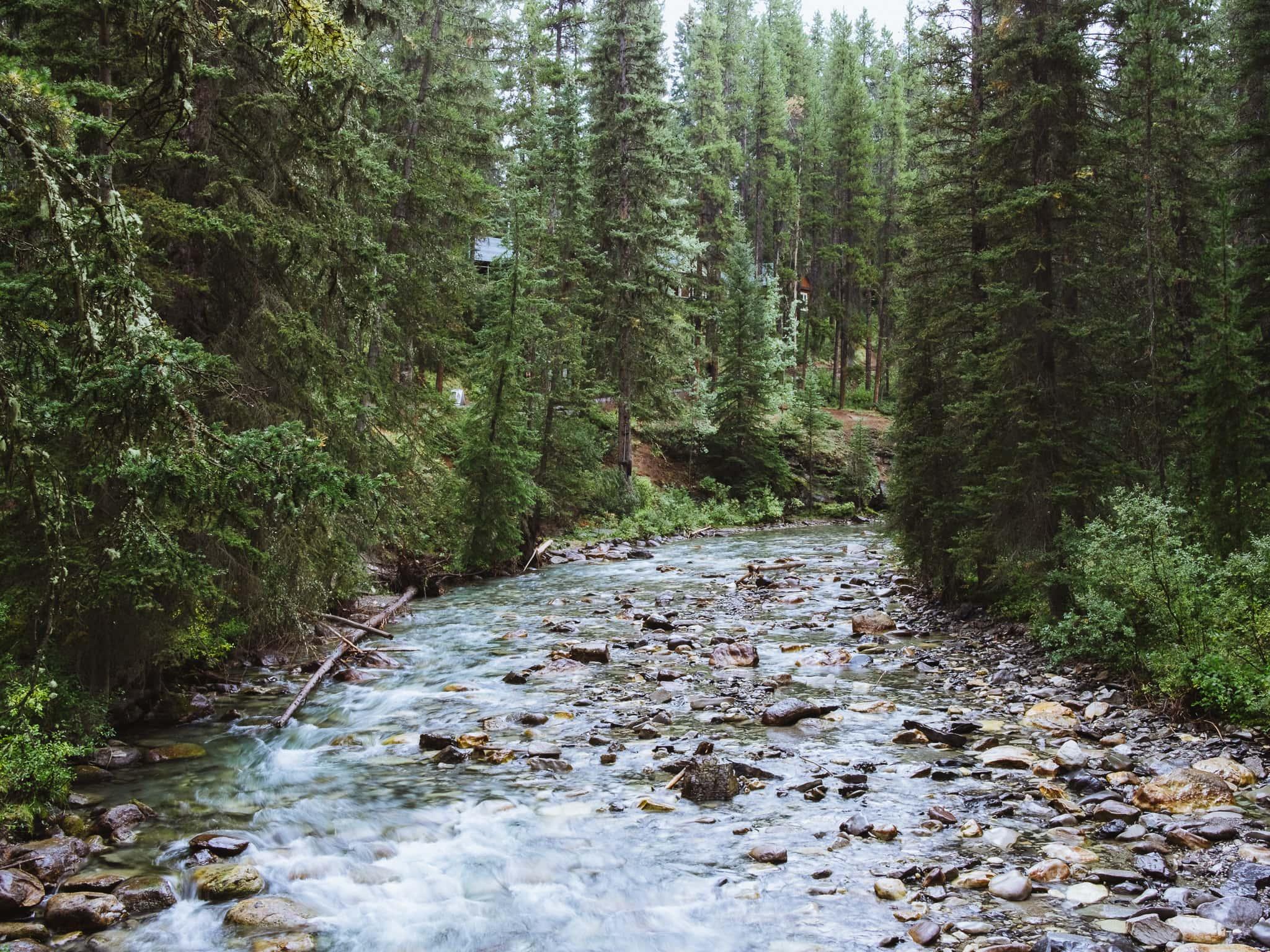 Banff-49.jpg