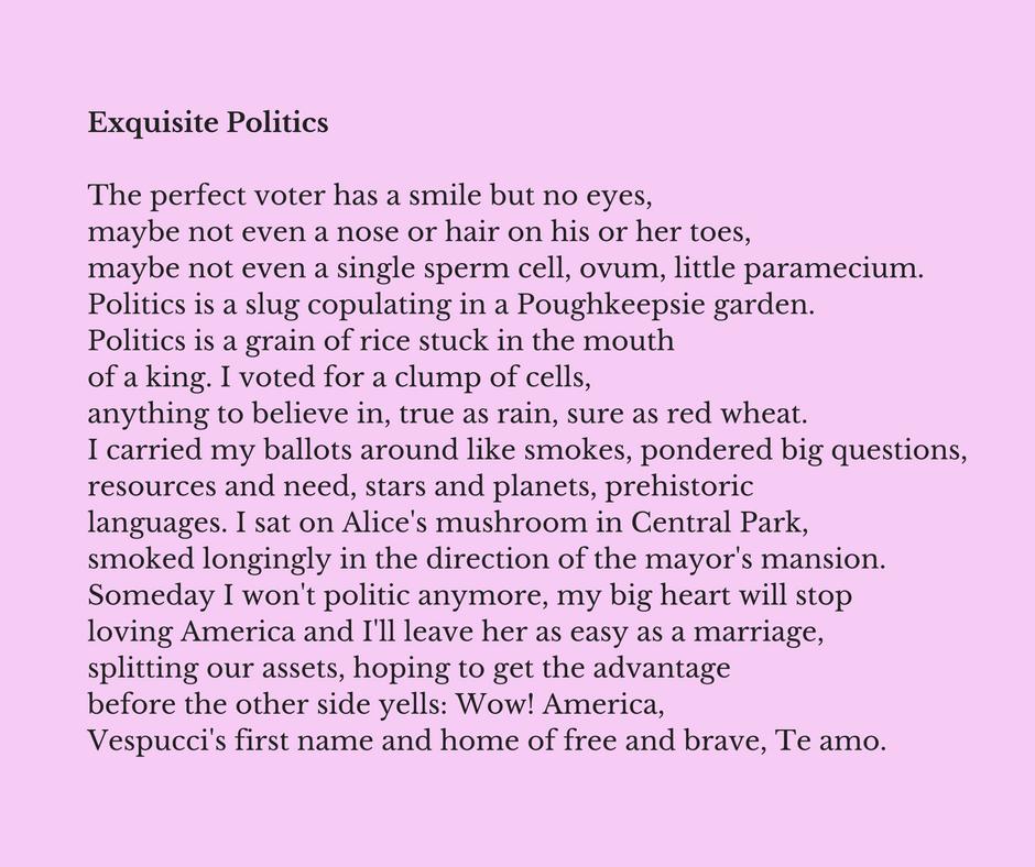 Exquisite Politics by Maureen Seaton and Denise Duhamel