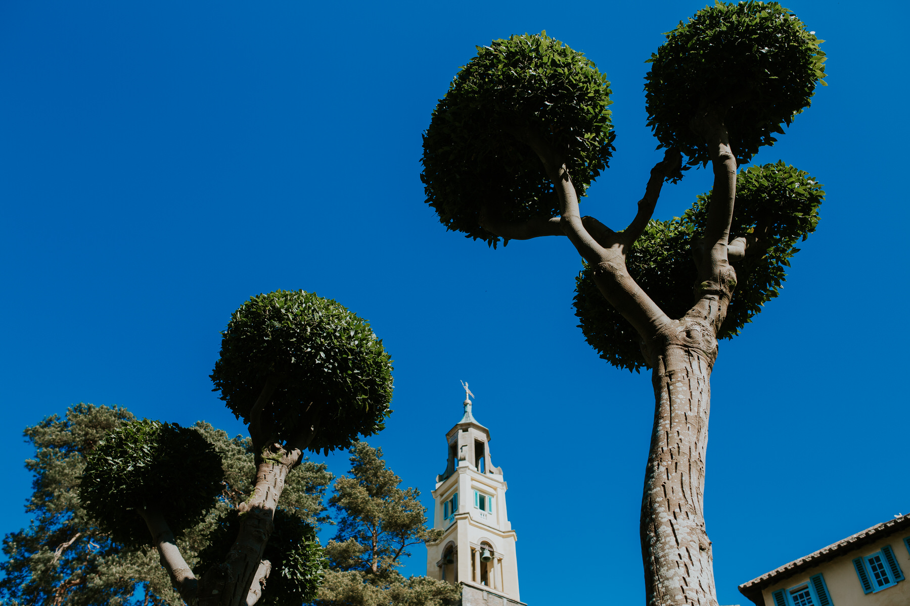 766 Portmeirion topiary blue sky.jpg
