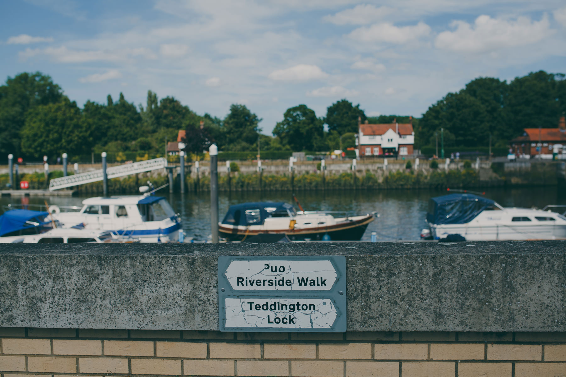 84 Teddington The Wharf riverside during summer.jpg
