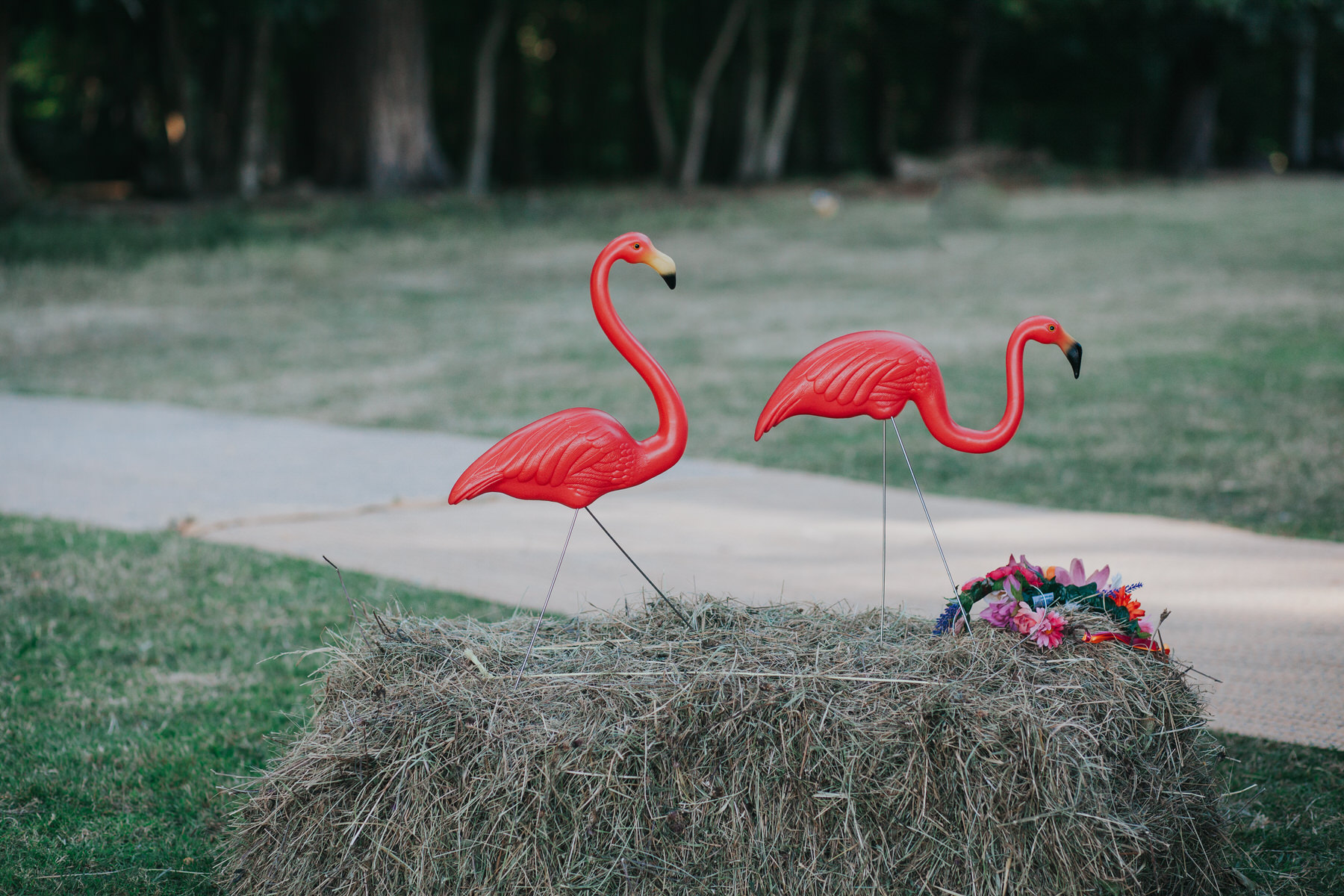 127 Knepp Castle wedding pink flamingos hay bale.jpg