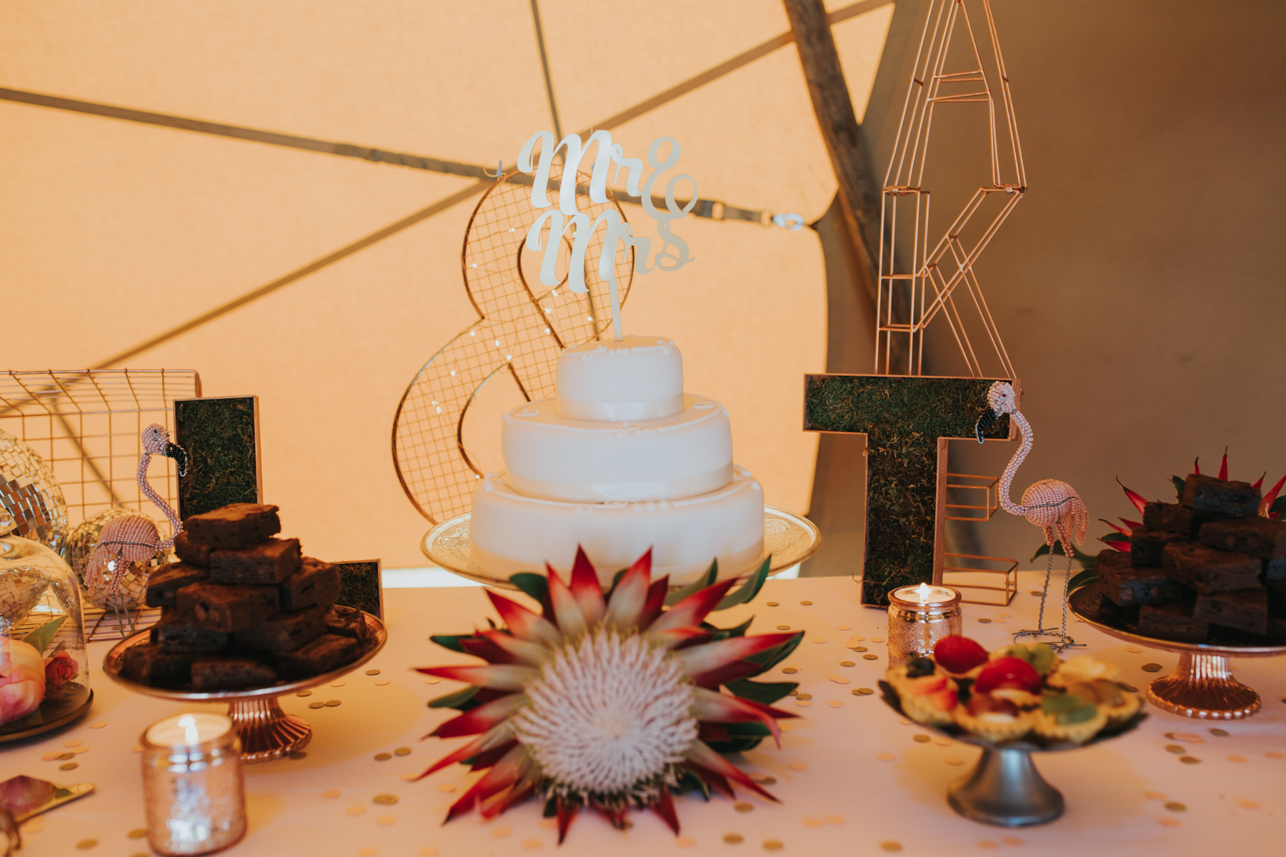 185 mr and mrs cake topper Knepp Castle giant protea.jpg