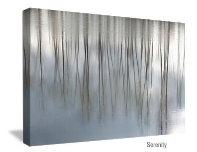 Serenity-canvasizer.jpg