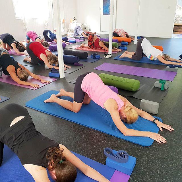 Today at Yoga Alma:  4:30pm Yin Yoga ☯️ 5:45pm Pilates 💪 Get on ya mat!