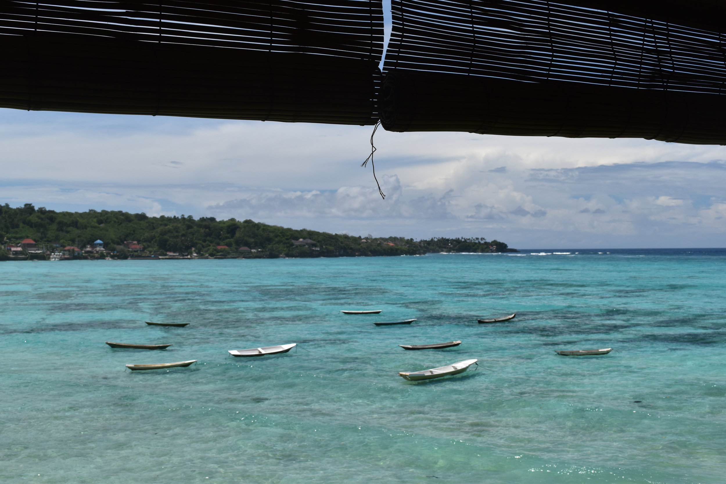 The view from the bar at Mama Mia, overlooking a seaweed farm.