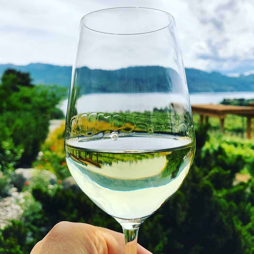 A crisp glass of white in front of Lake Okanagan. Cheers to an epic trip!