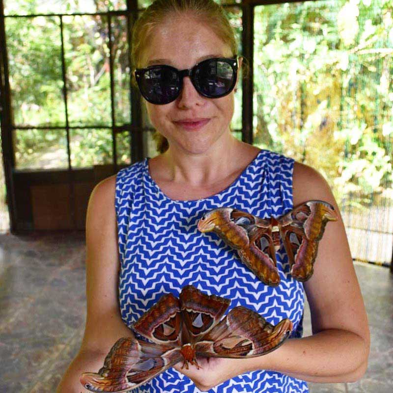 Up close and personal with the butterflies at Bali Butterfly Park.