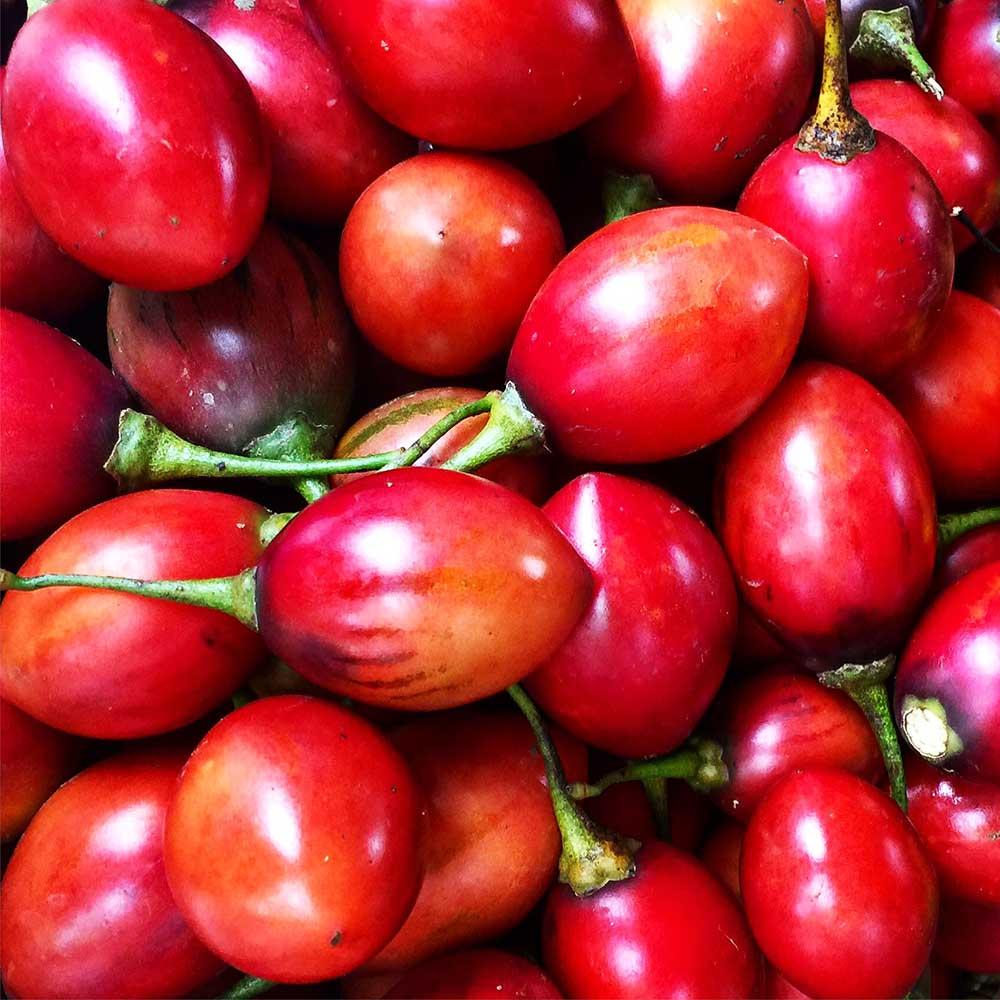 Tamarillos from the Samadi Organic Sunday Market.
