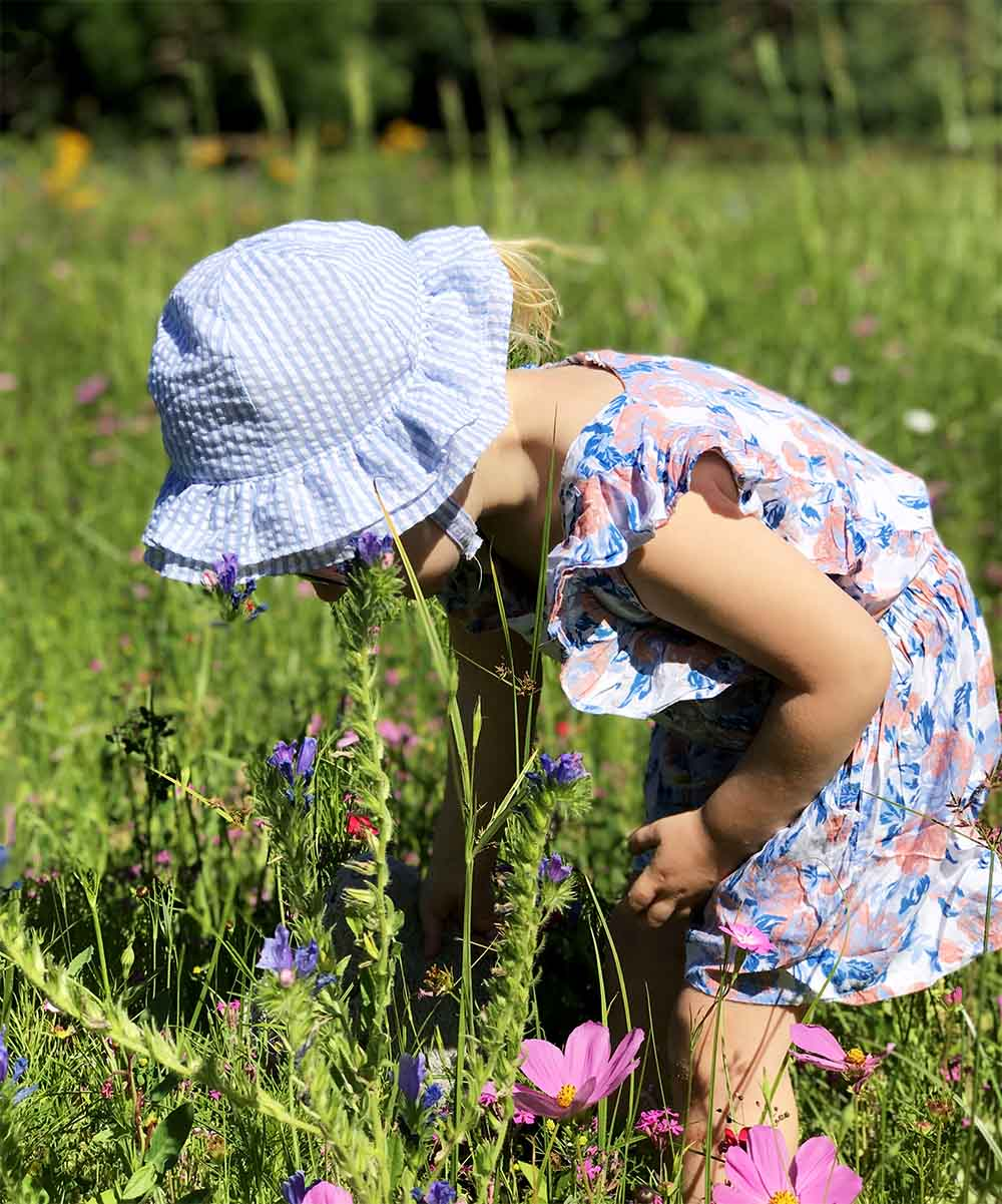Rosie exploring the wild flowers in the meadow in the grounds of our hotel. Bordeaux managed to entertain us all equally :-)