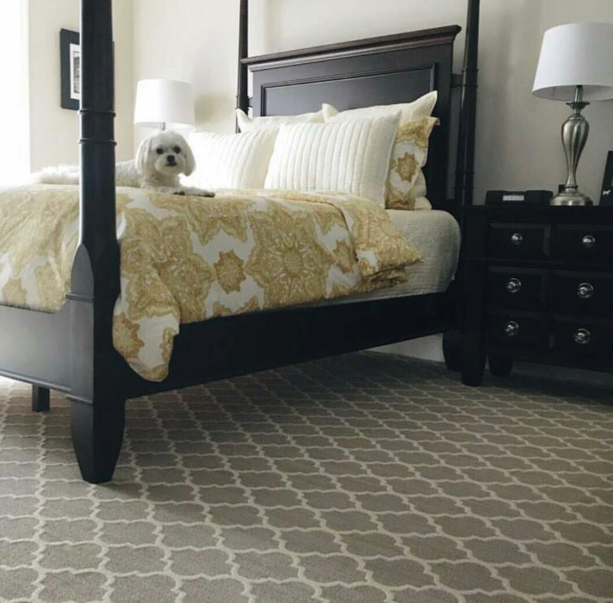 New carpet is a great way to add comfort and style to your home in 2018. -