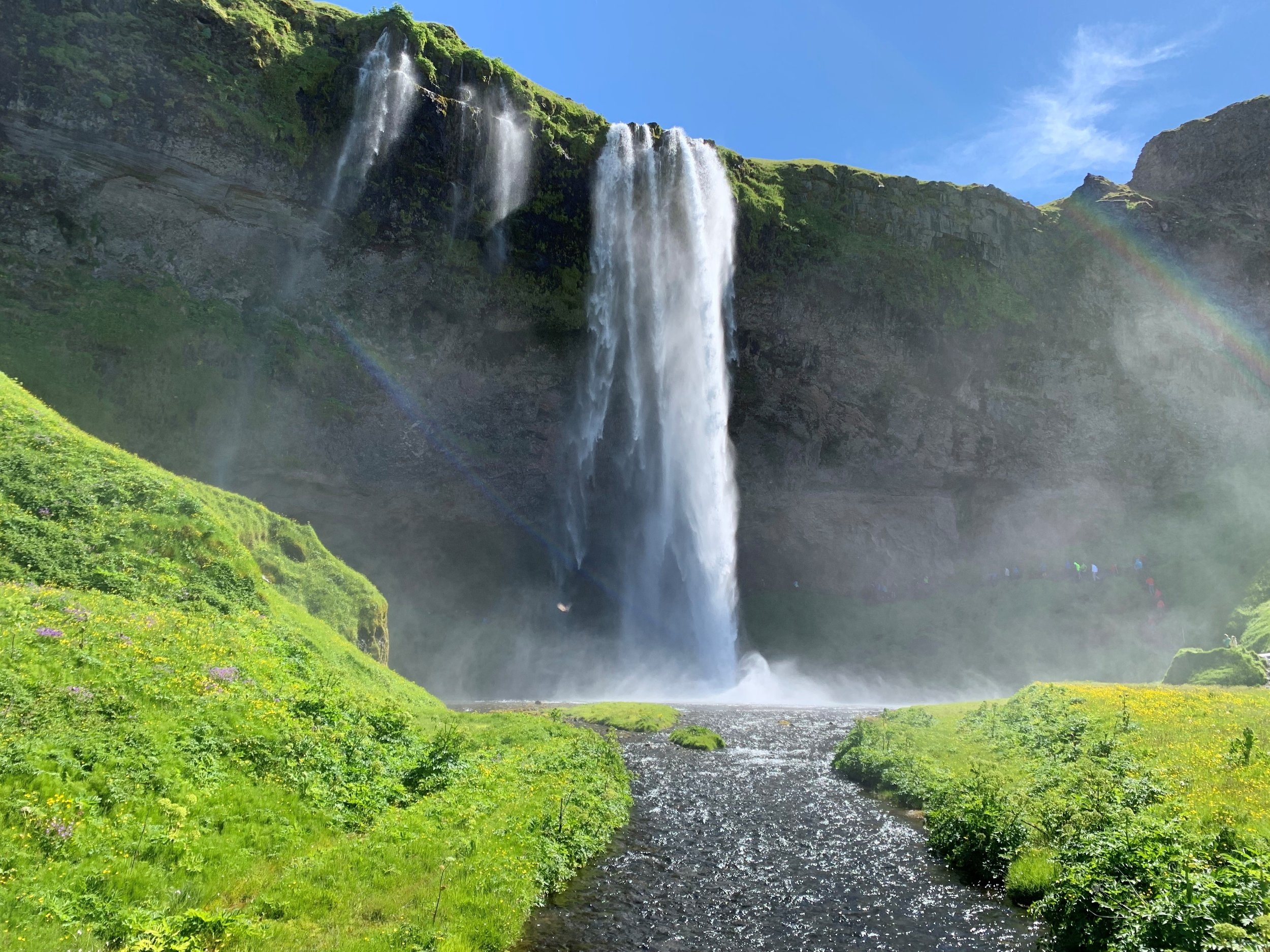 Welcome to the lush life in Iceland