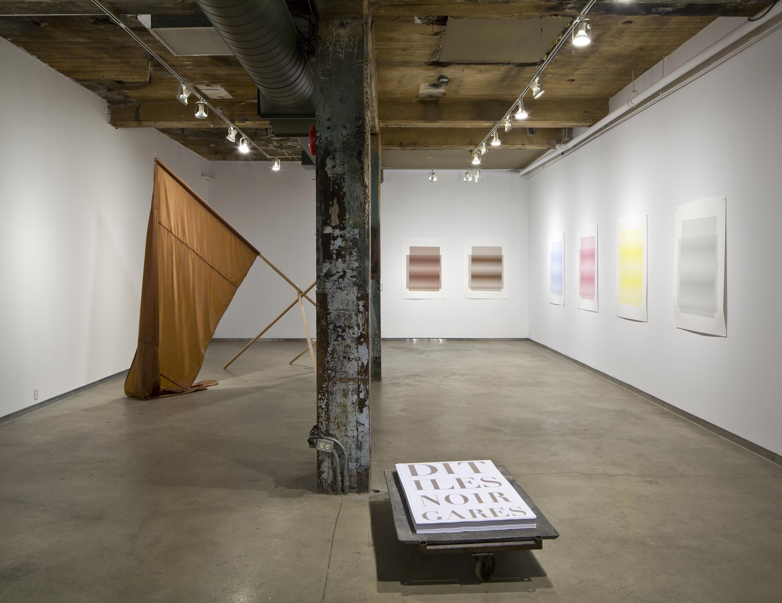 Brown Studies (2011)